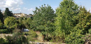Villa o terratetto Q3 – Gavinana / Galluzzo / Europa