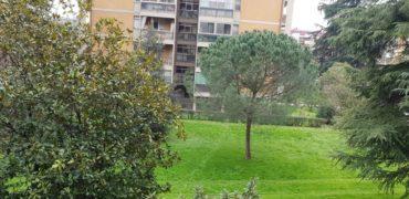 Quattro vani Q4 – Isolotto / Legnaia / Talenti
